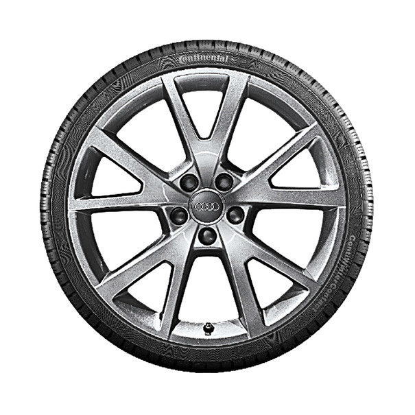 Audi 19 inch lichtmetalen winterset, 5-V-spaak