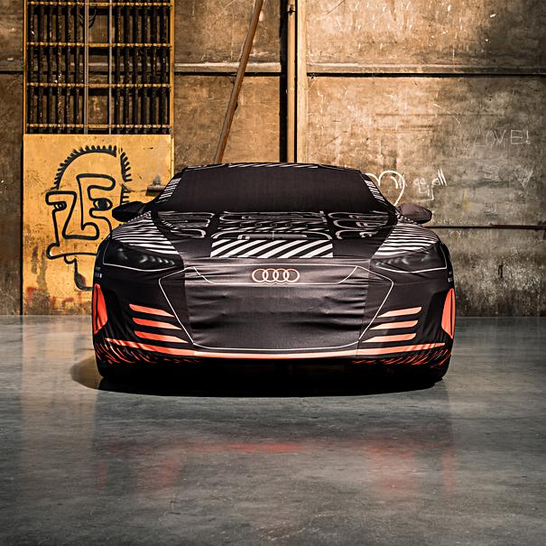 Audi Autohoes e-tron GT camouflage