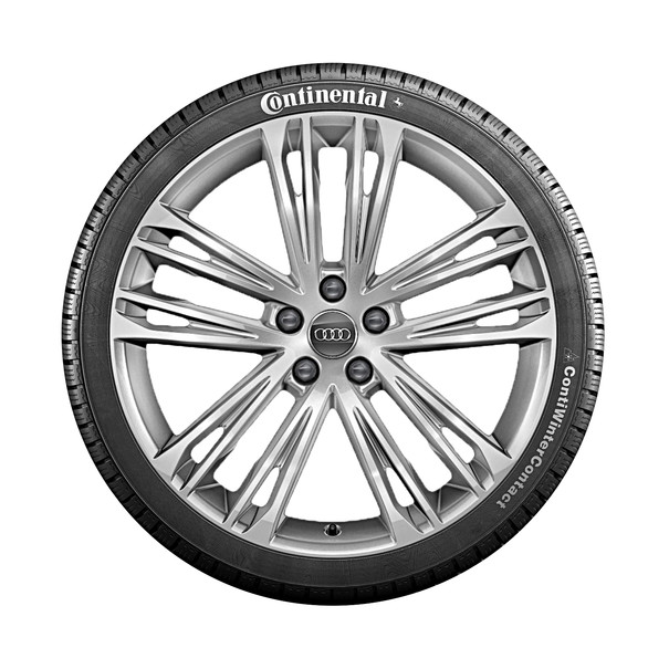 Audi 20 inch lichtmetalen winterset, 5-dubbelspaaks V