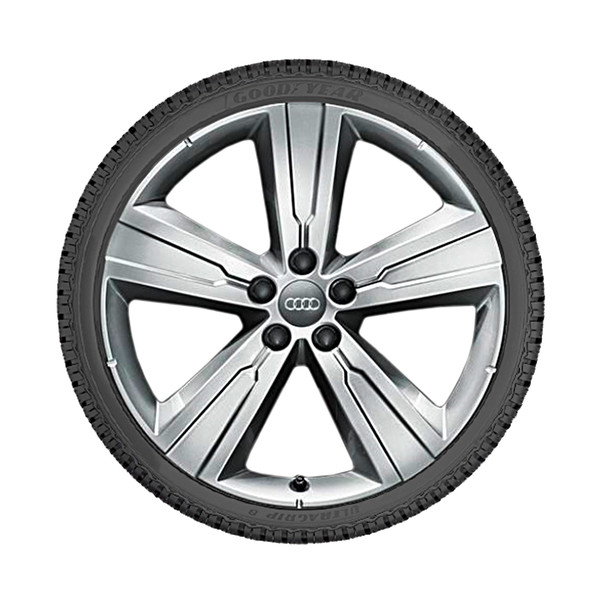 Audi 20 inch lichtmetalen winterset, 5-arm Crena