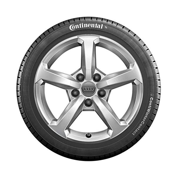Audi 16 inch lichtmetalen winterset, 5-Spaaks
