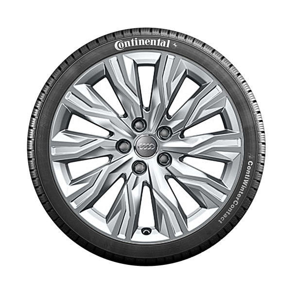 Audi 18 inch lichtmetalen winterset, 10-arm Gravis