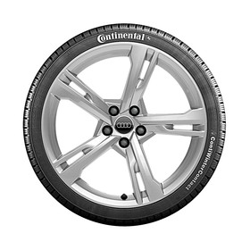 Audi 19 inch lichtmetalen winterset, Ramus zilver
