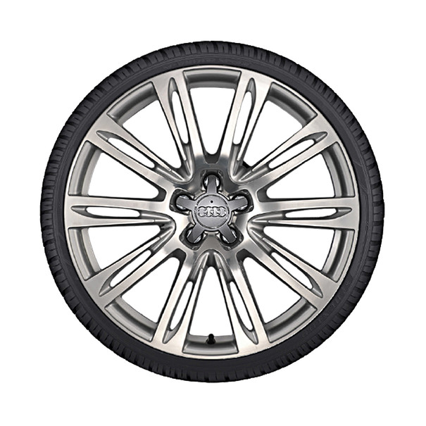 Audi 20 inch lichtmetalen winterset, 10-arm parallelspaak