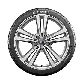 Audi 18 inch lichtmetalen winterwiel, 5-arm parallelspaak