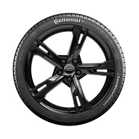 Audi 20 inch winterset, 5-Arm Ramusdesign