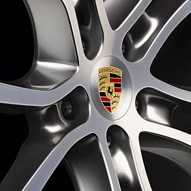 Wielnaafafdekkingen met gekleurd Porsche logo