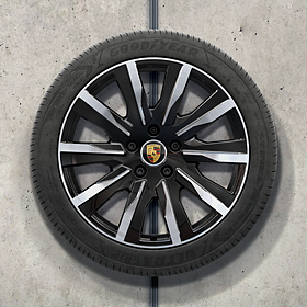 Porsche 20 inch zwart Design complete winterset voor Taycan