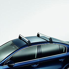 Volkswagen Allesdragers Passat