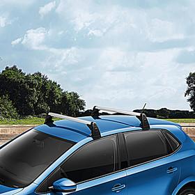 Volkswagen Allesdragers Polo, met dakrailing